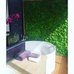 Lush Bathrooms  profile image.