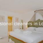 Maid Sailors London profile image.