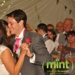 Mint DJ Services profile image.