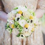 Miss Mole's Flower Emporium profile image.