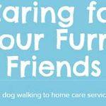Perfect Pet Care profile image.