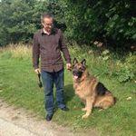 Pet Assist Animal Care profile image.
