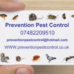 Prevention pest control  profile image.
