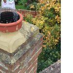 Pristine roofing profile image.