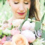 Rose Red & Lavender profile image.