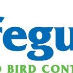SAFEGUARD PEST CONTROL profile image.