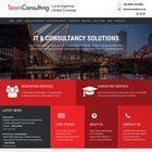 Team Consulting International