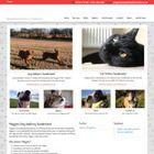 Maggie's Pet Services