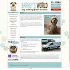 Barney's World