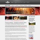 Flashpoint Fireworks