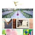 Beija Flor Events Ltd
