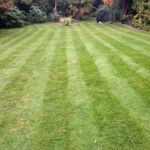 Spruce it up garden services and property maintenance  profile image.
