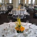 Sterling Design Events and Planning Inc profile image.