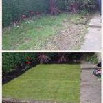 T.A.S Landascaping and Property Renovations profile image.