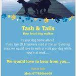 Tash & Tails profile image.