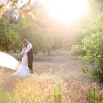 The Wedding Story Tellers profile image.