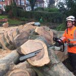Treescape Tree Surgery and Grounds Maintenance profile image.