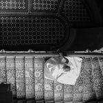 Photographic Memory Photographer  Vera Bardo  profile image.
