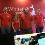 Whitefish Marketing profile image.